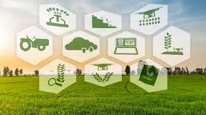 At CAGR During 2019-2025 Global Evaluation by Trends, Proportions, Share, Swot, and Key Developments , Farming Fertilizing Machinery Market Will Grow