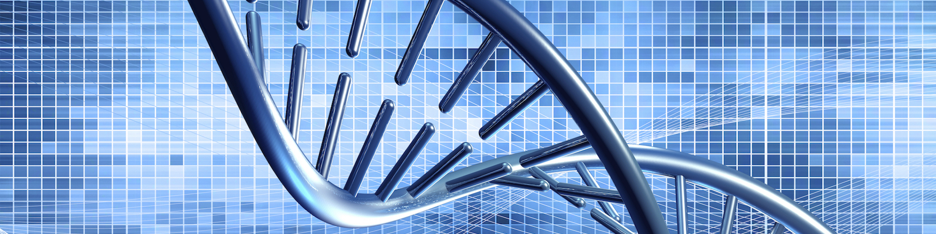 Bioinformatics Market Insights, New Project Investment and Potential Growth Scope 2026