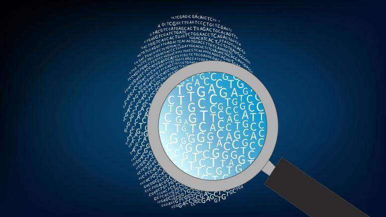 Global Genomics Market forecast 2020-2026 details shared in report:  BGI,Illumina Inc., QIAGEN N.V., F. Hoffmann-La Roche Ltd