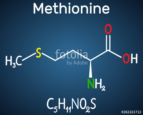 Methionine Market to witness widespread expansion during 2020-2026 according to new research report