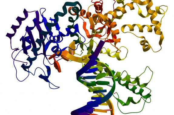 Global Protein Engineering Market growth prospects, key vendors, future scenario forecast to 2026