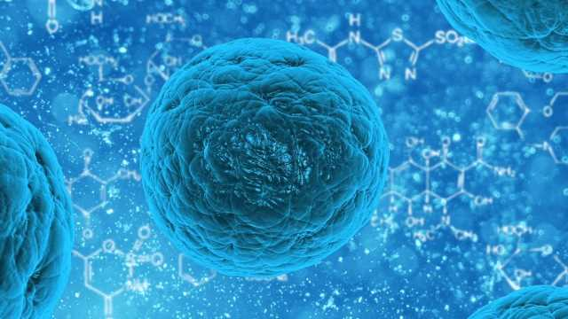 Global Synthetic Stem Cells Market 2020 analysis, size, top companies, By Application (Neurological Disorders, Cardiovascular Disease), share, strategies and forecast to 2026