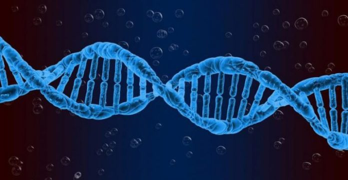 Global Viral Vectors and Plasmid DNA Manufacturing Market forecast 2020-2026 edited by leading research firm